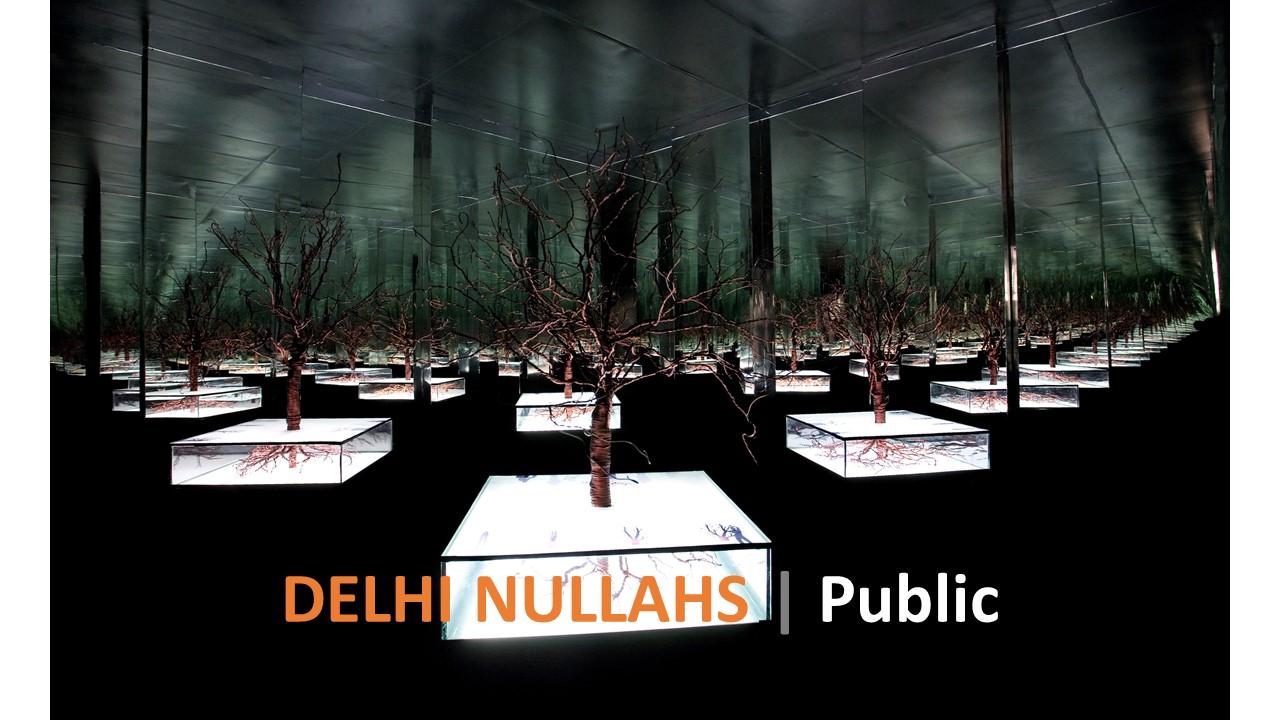 Delhi Nullahs